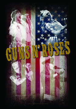 Guns N Roses Wall Tapestry