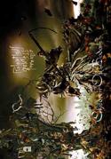 Children of Bodom - Scythe - Fabric Music Poster